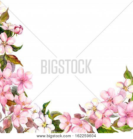 Floral greeting card. White and pink cherry sakura flowers. Watercolor