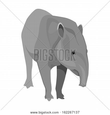 Mexican tapir icon in monochrome style isolated on white background. Mexico country symbol vector illustration.