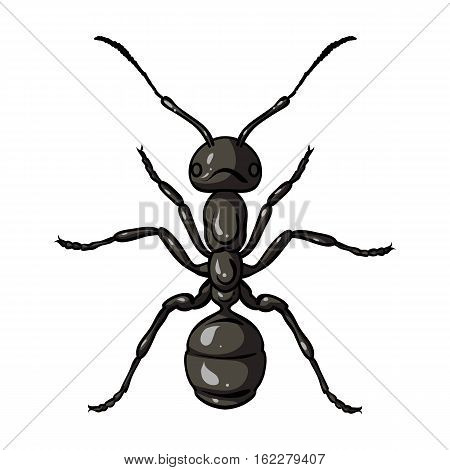 Ant icon in cartoon design isolated on white background. Insects symbol stock vector illustration.