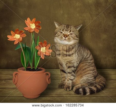 The cat grows flowers. It is a real agronomist. But these flowers are like sausages. Maybe they are GMO.