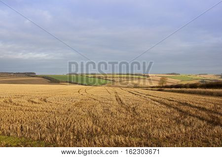 Straw Stubble And Scenery