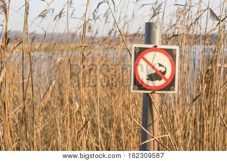 Fishing Sign By A River With Tall Reeds