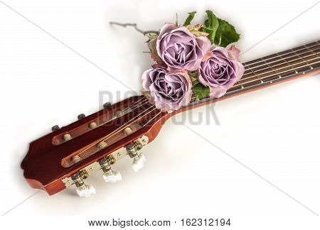 A photo of a guitar neck with tender pink roses, on a white background with copyspace