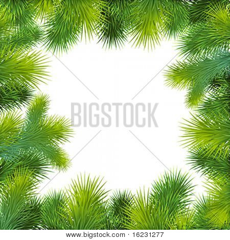 christmas background with christmas tree