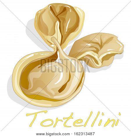 Tortellini Italian isolated illustration on white background .