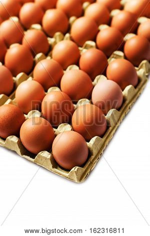 Fresh raw brown eggs chicken eggs in a pack for eggs. Food background