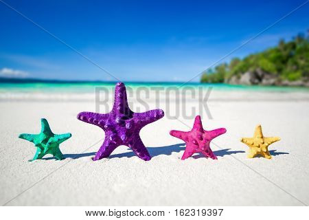 Color Starfishes On Sandy Beach