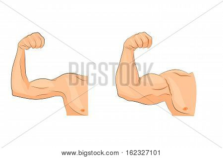 vector illustration for sport and medical publications