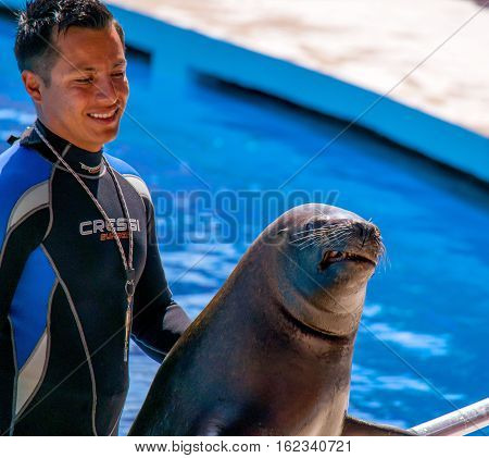 Alanya, Turkey - May 3, 2014: Dolphin Sealanya - shows featuring dolphins and sea lions. Speech and sea lion trainer.