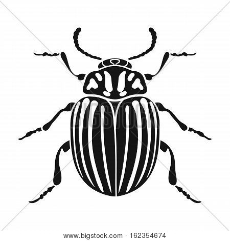 Colorado beetle icon in black design isolated on white background. Insects symbol stock vector illustration.