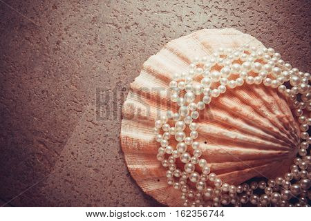 pearl shells with beads teeth health concept