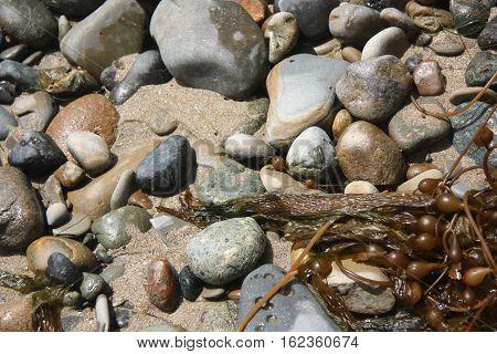 a rocky beach on the sunny coast
