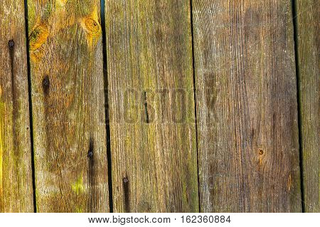 Close Up Of Natural Old Wooden Planks