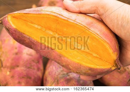 fresh cut orange potato in hand over blur potatoes on background