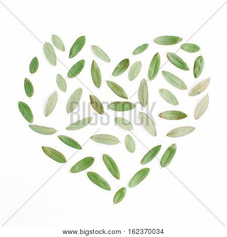 heart symbol made of green petals on white background. flat lay top view