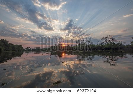 Sunset reflecting in a river in Pantanal Brazil