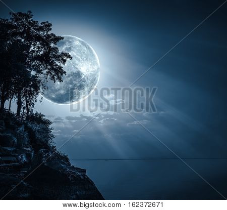 Silhouettes of tree against dark blue sky over tranquil sea. Nighttime sky with large moon with ray. Full moon behind trees. The moon were NOT furnished by NASA.