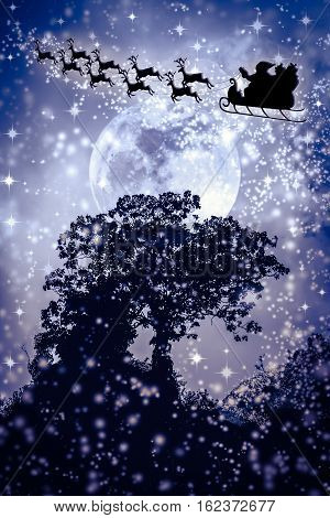 Silhouettes of tree against dark blue sky over tranquil sea. Nighttime sky and large moon with Santa and flying reindeers. Full moon behind trees.  poster