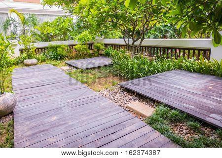 Wood Way in to green garden