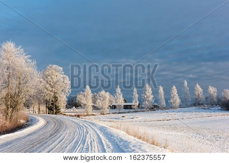 Icy road in countryside with frosted trees on a winter day