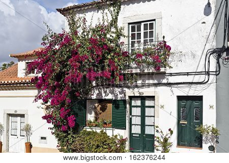 AZEITAO, PORTUGAL - October 15, 2016: House built in traditional Portuguese architecture and covered by a red bougainvillea in the village of Azeitao Portugal