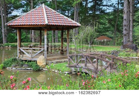 Element of landscape design wooden bridge and gazebo on the island in the garden pond.
