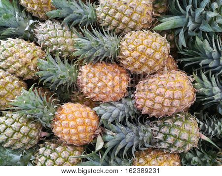 Group of pineapple fruit ,Pineapple fruit background. Fresh of pineapple at the thai market. Group of pineapple fruit on the basket