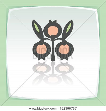 Vector outline cranberry fruit food icon on white flat square plate. Elements for mobile concepts and web apps. Modern infographic logo and pictogram.