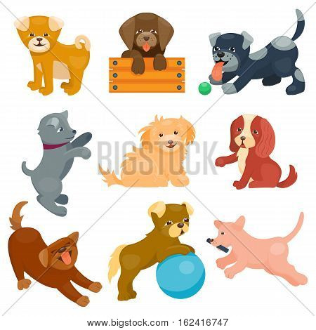 Vector illustration cute dogs characters. Set of funny purebred puppy on white background. Comic smile happy mammal breed drawing icon. Pedigree terrier canine adorable animal.