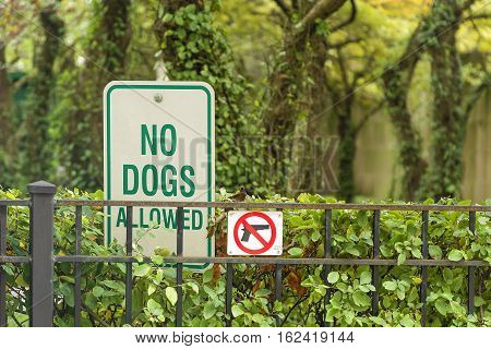 No Dogs and no guns Allowed On The Grass Area Sign