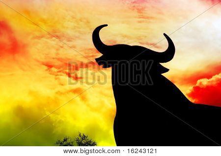 silhouette of a bull in the field in Spain