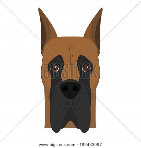 Great Dane dog isolated on white background vector illustration