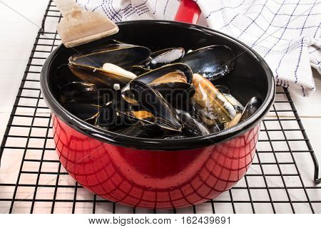 freshly cooked scottish mussels in a red enamel pot