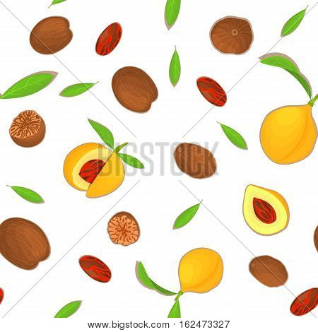 Vector seamless pattern Nutmeg spice fruit. White background with Nutmeg nuts fruit in the shell, whole, shelled, leaves appetizing looking for design of healthy food, printing on fabric, textile