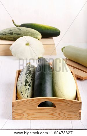Variety of freshly picked vegetable - summer squash courgette zucchini patisson. Copy space.