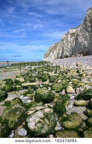 Cap Blanc Nez, Cote d'Opale, Pas-de-Calais, France: The beach at low tide poster
