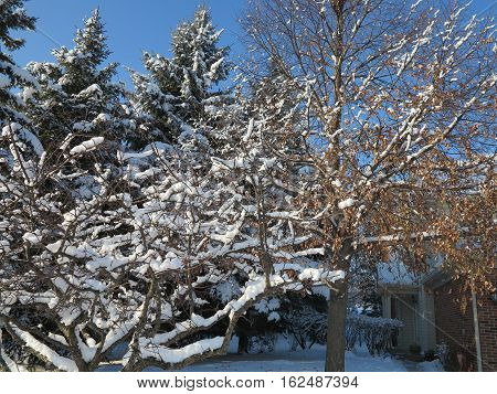 Winter around the town homes on Seaver Lane in Hoffman Estates, Illinois