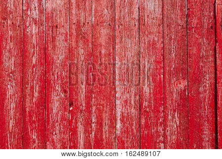 Red Wooden Vintage Style Texture. Natural Rustic Old Wood Board Wall Shabby Color Background. Wood Surface Fence Panel with Peeling Paint Close up. Horizontal Image Copy Space