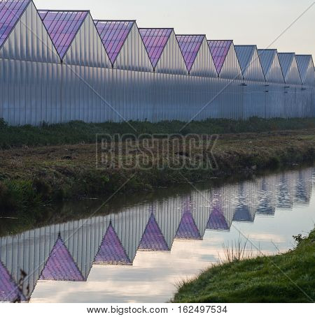 Greenhouses for horticulture with grass, sky, ditch and reflection in water. Landscape from Aalsmeer, Noord-Holland, the Netherlands.