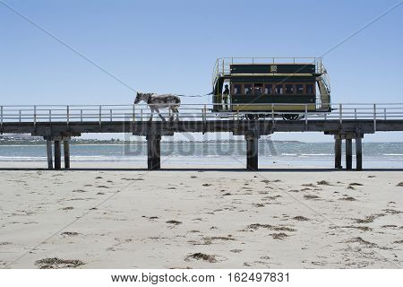Victor Harbor SA Australia - Dec 20 2016: Horse Drawn Tram traveling along the bridge from Granite Island filled with tourists and the conductor clearly seen in silhouette.