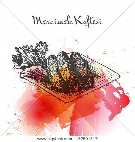 Mercimek Koftesi watercolor effect illustration. Vector illustration of Turkish cuisine.