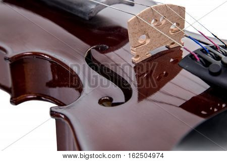 Part of wooden brown viola, isolated on white background