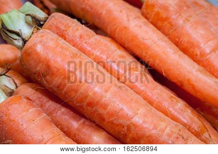 Bunch of raw unprepared carrots in closeup view. These are unpeeled specimen from the local supermarket and are considered quite fresh.
