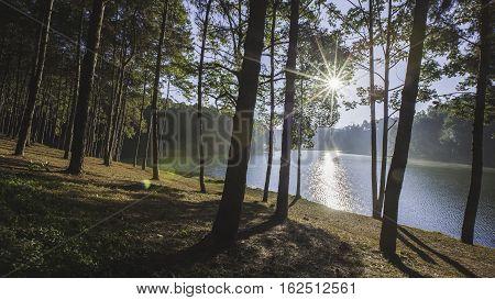 Sunrise at Pang Ung pine forest park, Pang Ung Mae Hong Son, Thailand