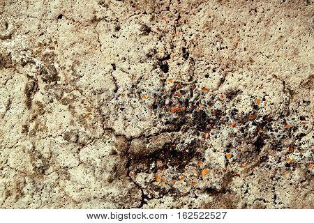 Concrete, concrete wall, concrete background, concrete texture. Grainey concrete, rough concrete texture, closeup. Grunge concrete.