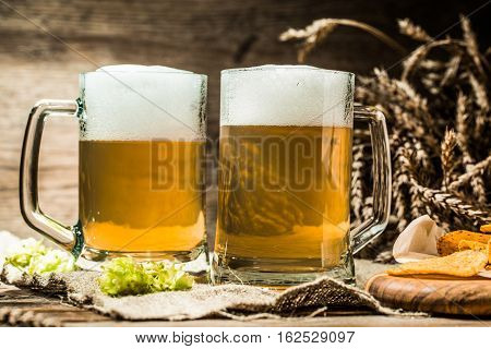 Two mugs of foamy beer with potato chips, with hops, wheat for cloth on wooden table