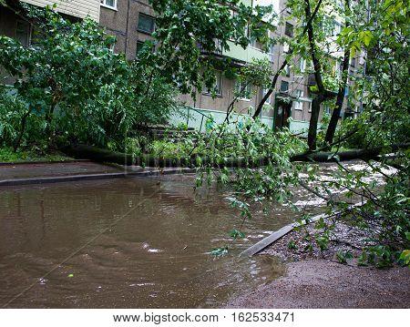 Tornado In The City Of Minsk, Republic  Belarus 13.07.2016