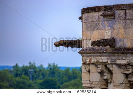 Closeup architectural detail of Amboise castle in France