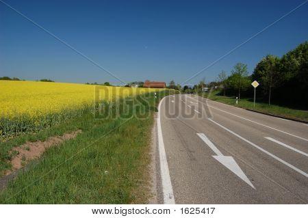 Rural Road And Rape Fields In Machenbach