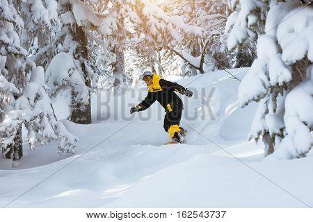 Off-piste snowboarding at ski resort. Snowboarder freerides in forest